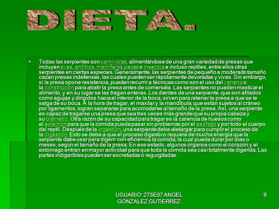USUARIO: 275E07 ANGEL GONZALEZ GUTIERREZ 10