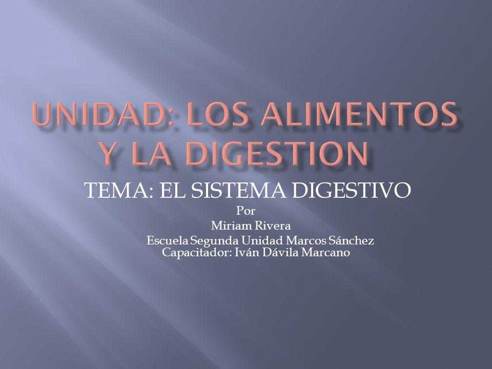 Reconocer la importancia del sistema digestivo para que el organismo se mantenga.