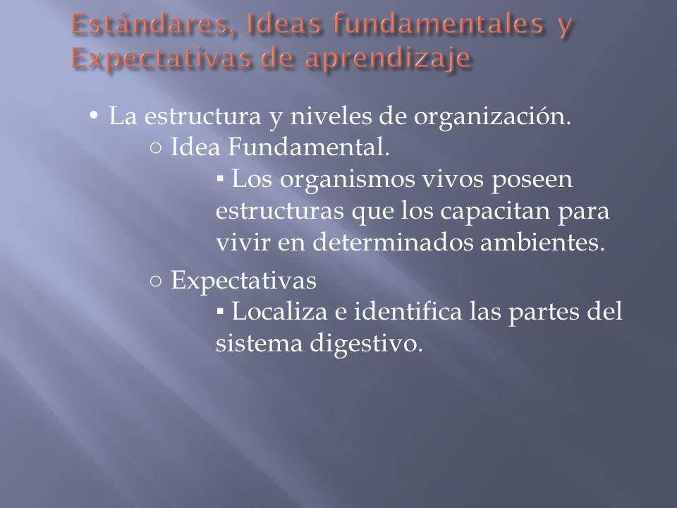 Los sistemas y los modelos.Ideas Fundamentales.