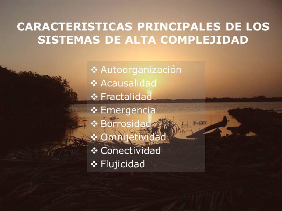 CARACTERISTICAS PRINCIPALES DE LOS SISTEMAS DE ALTA COMPLEJIDAD Autoorganización Acausalidad Fractalidad Emergencia Borrosidad Omnijetividad Conectivi