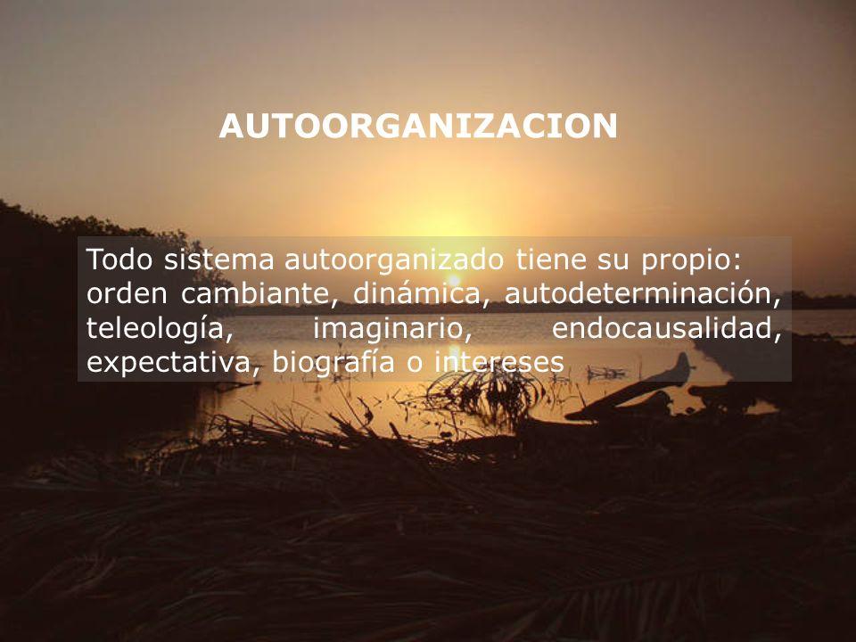 AUTOORGANIZACION Todo sistema autoorganizado tiene su propio: orden cambiante, dinámica, autodeterminación, teleología, imaginario, endocausalidad, ex