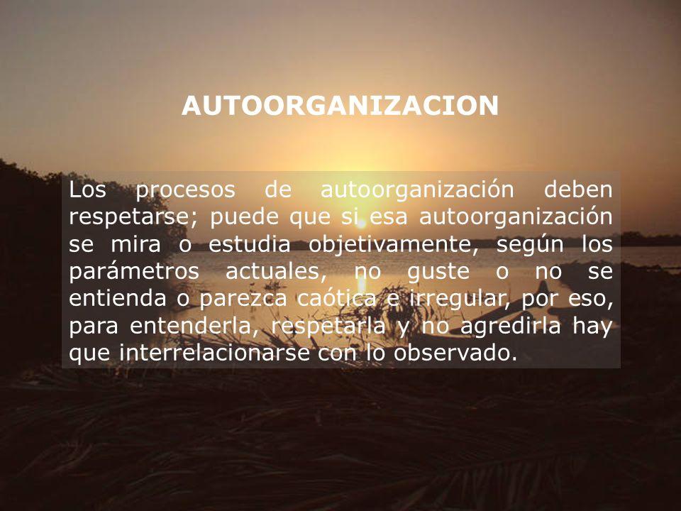 AUTOORGANIZACION Los procesos de autoorganización deben respetarse; puede que si esa autoorganización se mira o estudia objetivamente, según los parám