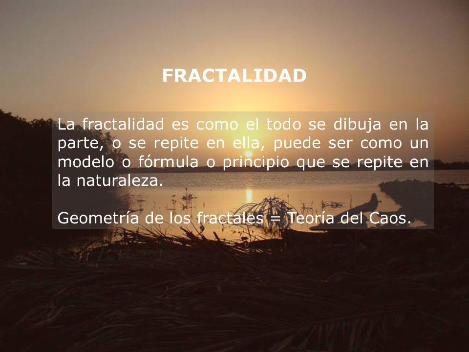 FRACTALIDAD La fractalidad es como el todo se dibuja en la parte, o se repite en ella, puede ser como un modelo o fórmula o principio que se repite en