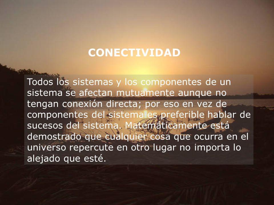 CONECTIVIDAD Todos los sistemas y los componentes de un sistema se afectan mutuamente aunque no tengan conexión directa; por eso en vez de componentes