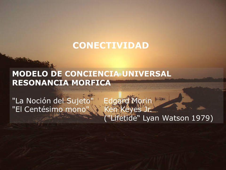 CONECTIVIDAD MODELO DE CONCIENCIA UNIVERSAL RESONANCIA MORFICA