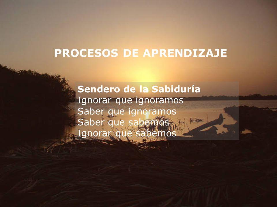 PROCESOS DE APRENDIZAJE Sendero de la Sabiduría Ignorar que ignoramos Saber que ignoramos Saber que sabemos Ignorar que sabemos