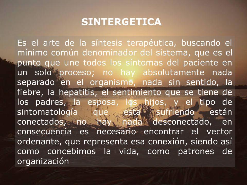 SINTERGETICA Es el arte de la síntesis terapéutica, buscando el mínimo común denominador del sistema, que es el punto que une todos los síntomas del p