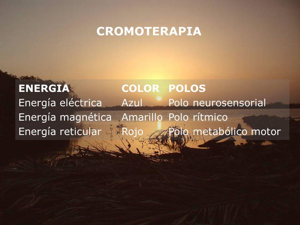 CROMOTERAPIA ENERGIACOLORPOLOS Energía eléctricaAzulPolo neurosensorial Energía magnéticaAmarilloPolo rítmico Energía reticularRojoPolo metabólico mot