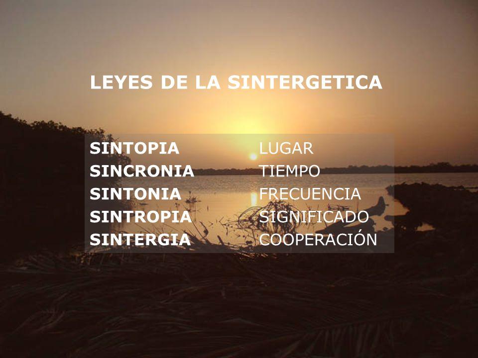 LEYES DE LA SINTERGETICA SINTOPIALUGAR SINCRONIATIEMPO SINTONIAFRECUENCIA SINTROPIASIGNIFICADO SINTERGIACOOPERACIÓN