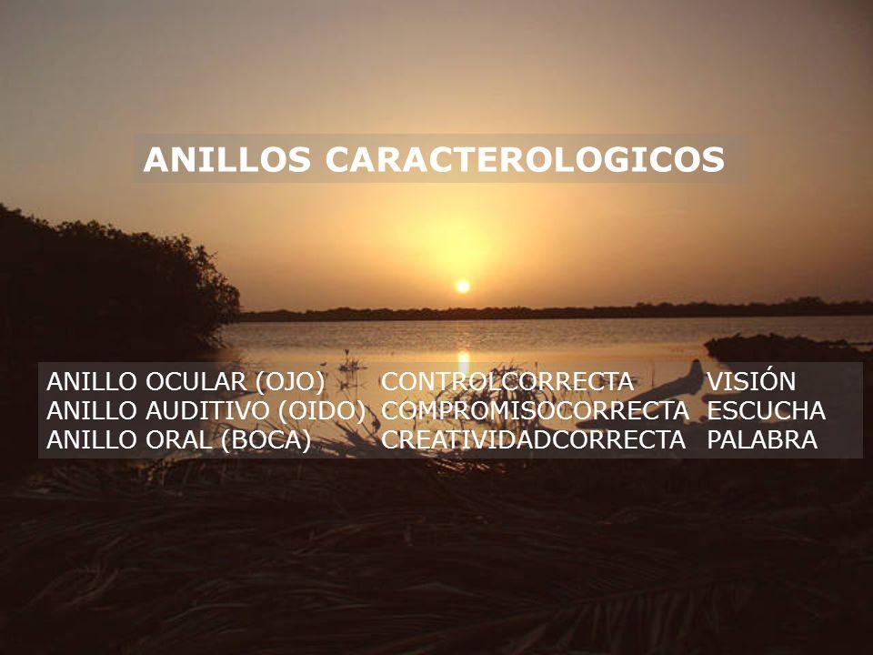 ANILLOS CARACTEROLOGICOS ANILLO OCULAR (OJO)CONTROLCORRECTAVISIÓN ANILLO AUDITIVO (OIDO)COMPROMISOCORRECTAESCUCHA ANILLO ORAL (BOCA)CREATIVIDADCORRECT