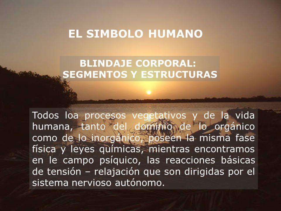 EL SIMBOLO HUMANO BLINDAJE CORPORAL: SEGMENTOS Y ESTRUCTURAS Todos loa procesos vegetativos y de la vida humana, tanto del dominio de lo orgánico como