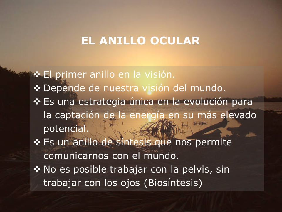 EL ANILLO OCULAR El primer anillo en la visión. Depende de nuestra visión del mundo. Es una estrategia única en la evolución para la captación de la e
