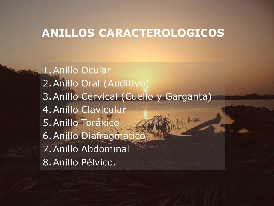 ANILLOS CARACTEROLOGICOS 1.Anillo Ocular 2.Anillo Oral (Auditivo) 3.Anillo Cervical (Cuello y Garganta) 4.Anillo Clavicular 5.Anillo Toráxico 6.Anillo