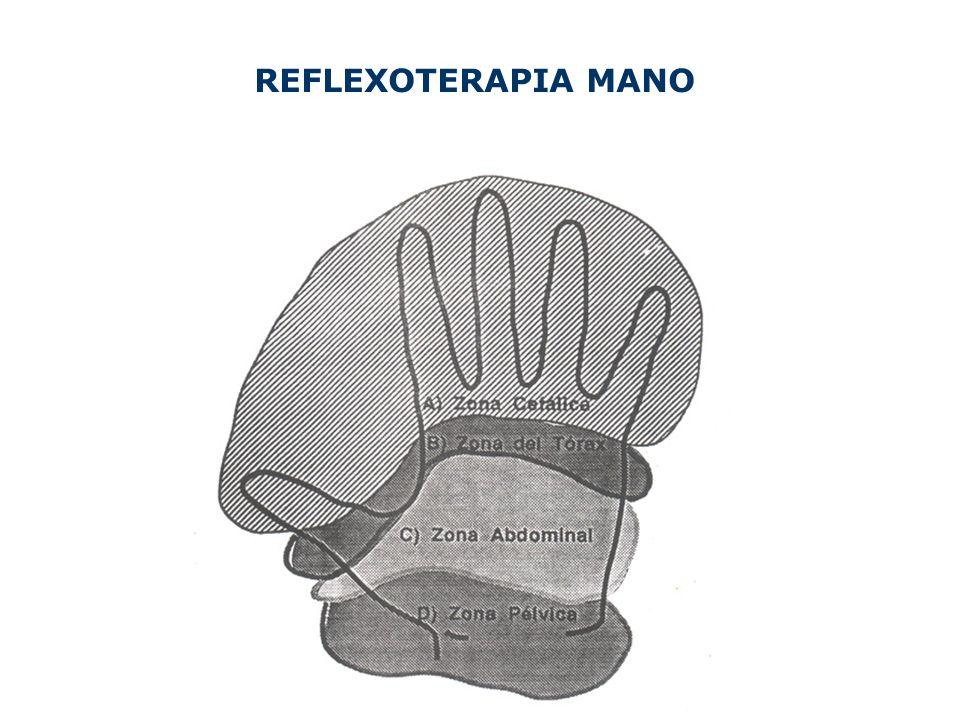 REFLEXOTERAPIA MANO