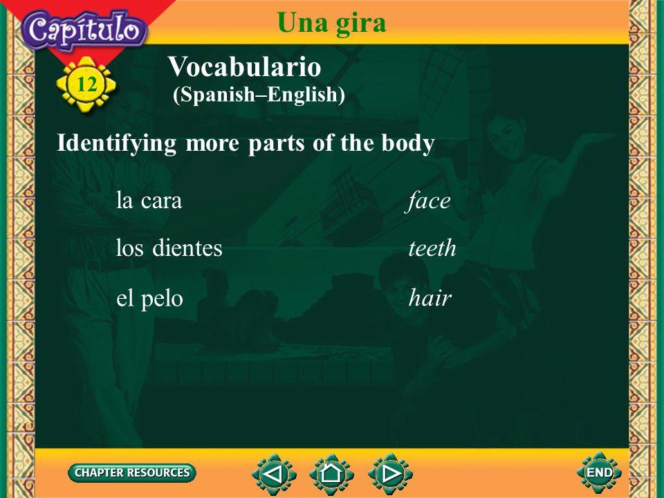 Vocabulario Identifying articles for grooming and hygiene un tubo de pasta (crema) dentífrica tube of toothpaste 12 Una gira un rollo de papel higiéni