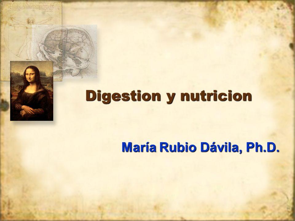 calorías La energia que contienen los alimentos se mide en cantidad de calor liberado por el rompimiento de la molecula de glucosa en CO 2 y H 2 O.