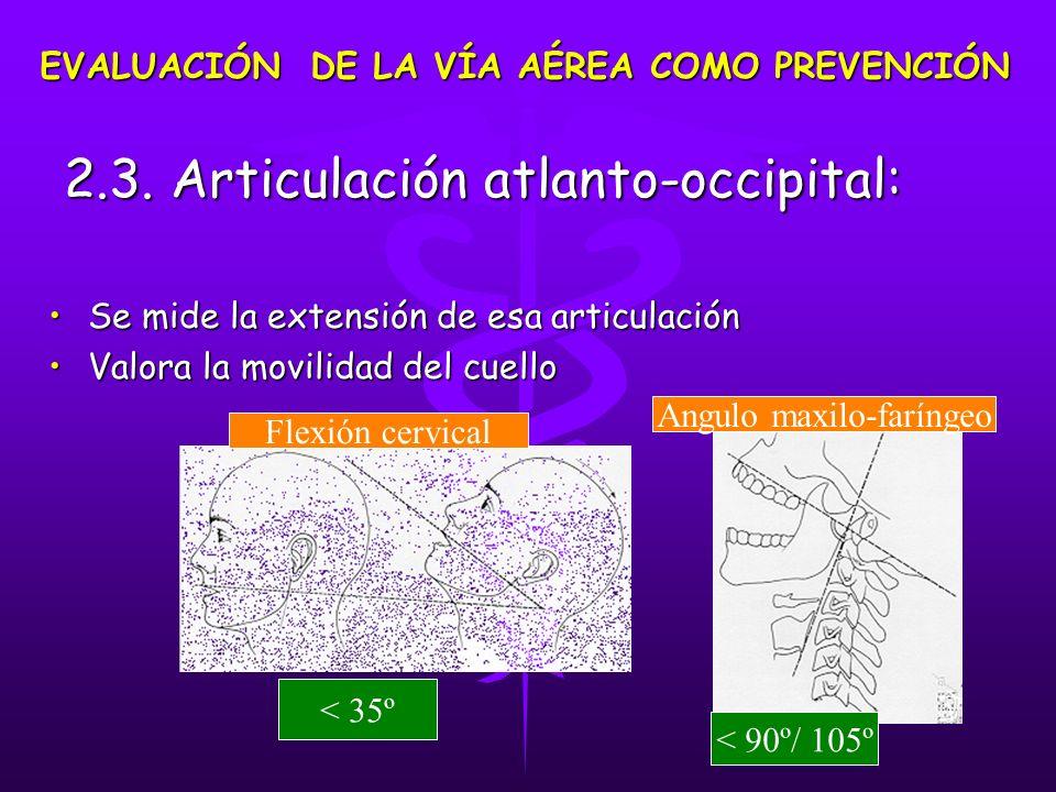 2.3. Articulación atlanto-occipital: 2.3. Articulación atlanto-occipital: Se mide la extensión de esa articulaciónSe mide la extensión de esa articula