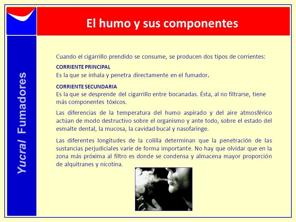 Yucral Fumadores Cuando el cigarrillo prendido se consume, se producen dos tipos de corrientes: CORRIENTE PRINCIPAL Es la que se inhala y penetra dire