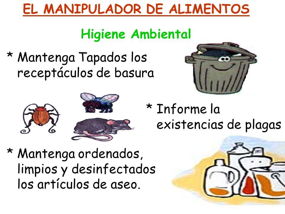 EL MANIPULADOR DE ALIMENTOS Higiene Ambiental * Mantenga Tapados los receptáculos de basura * Informe la existencias de plagas * Mantenga ordenados, l