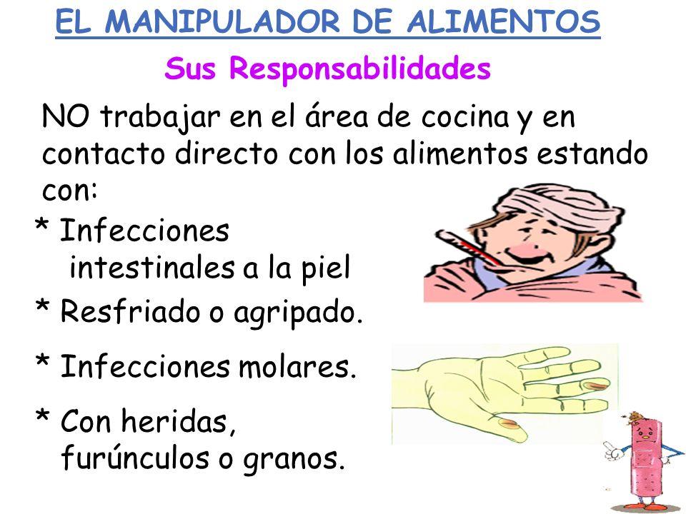 EL MANIPULADOR DE ALIMENTOS Sus Responsabilidades NO trabajar en el área de cocina y en contacto directo con los alimentos estando con: * Infecciones