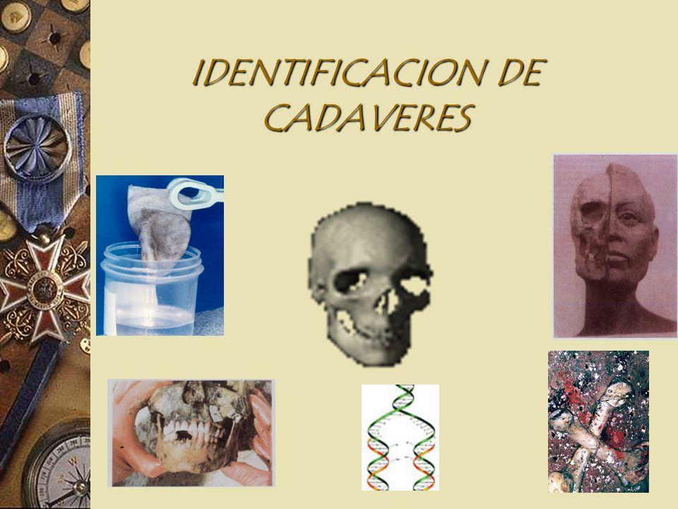 MARCO LEGAL DE LA IDENTIFICACION EN COLOMBIA Resolución 160 del 7-01-96, (CNE), adopto el sistema AFIS en la Registradura Nacional. Ley 600/2000 Art.