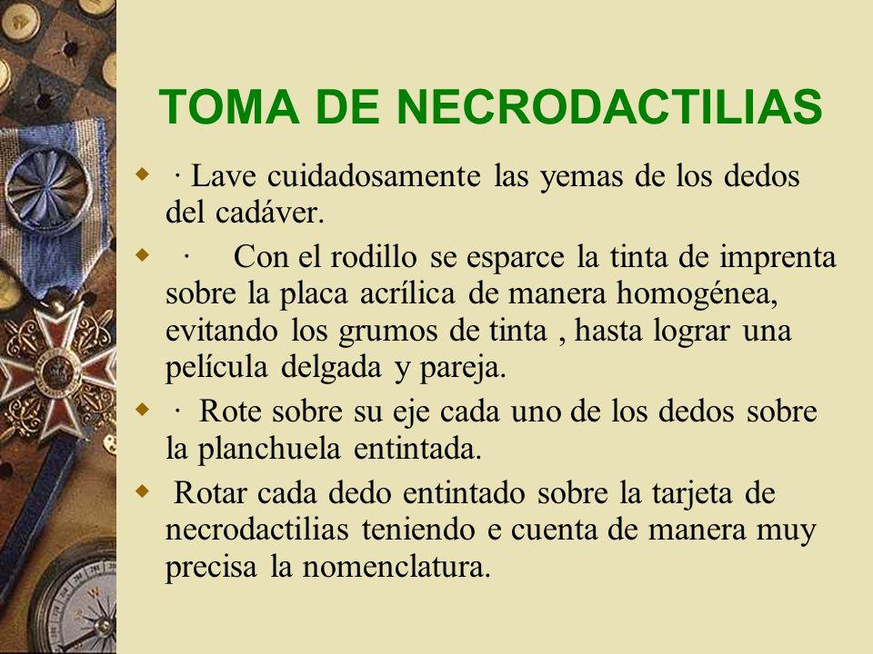 SEÑALES PARTICULARES INTERNAS 1.Materiales y/o señales de tratamiento médico u odontológico. Platinas, osteosíntesis, suturas metálicas o de otros mat