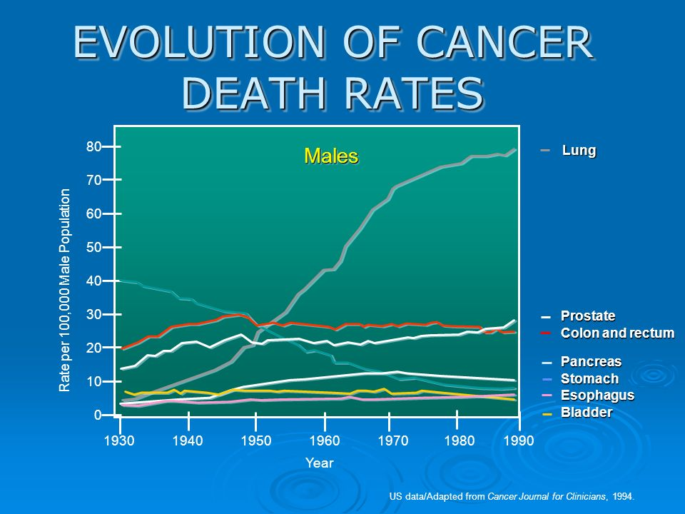 EVOLUTION OF CANCER DEATH RATES 19301940195019601970 1980 1990 US data/Adapted from Cancer Journal for Clinicians, 1994. MalesMales 80 70 60 50 40 30