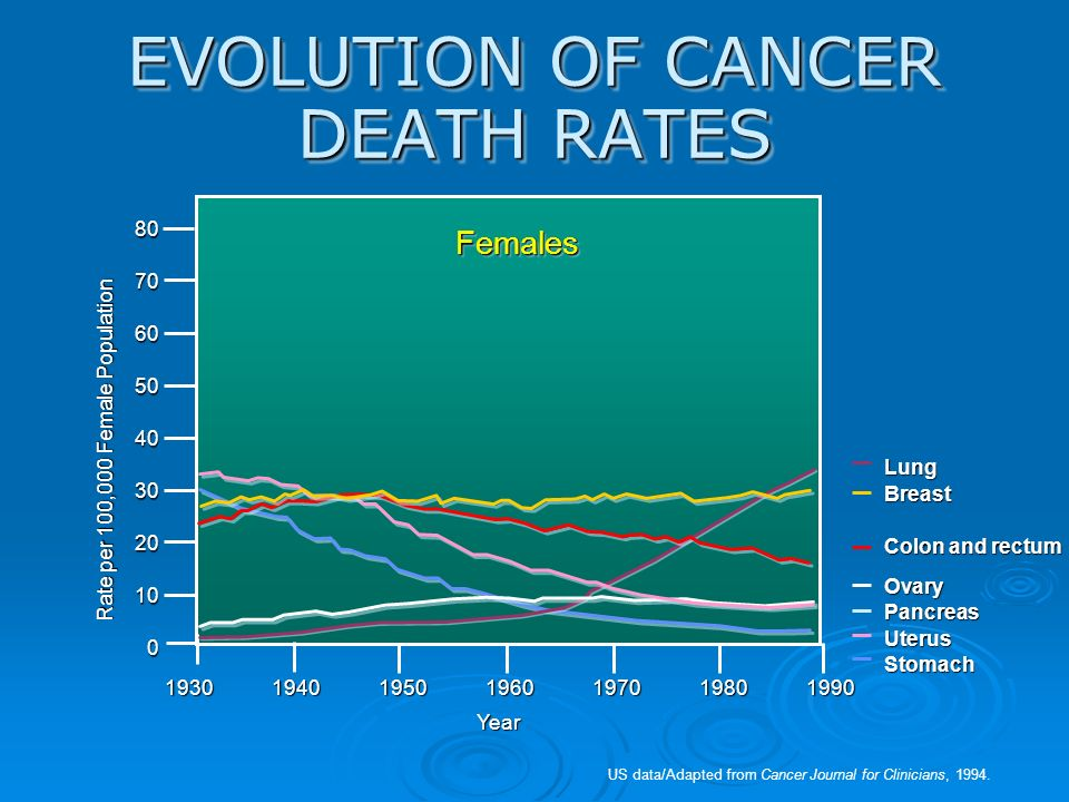 EVOLUTION OF CANCER DEATH RATES 1930194019501960197019801990 US data/Adapted from Cancer Journal for Clinicians, 1994. FemalesFemales 8070605040302010