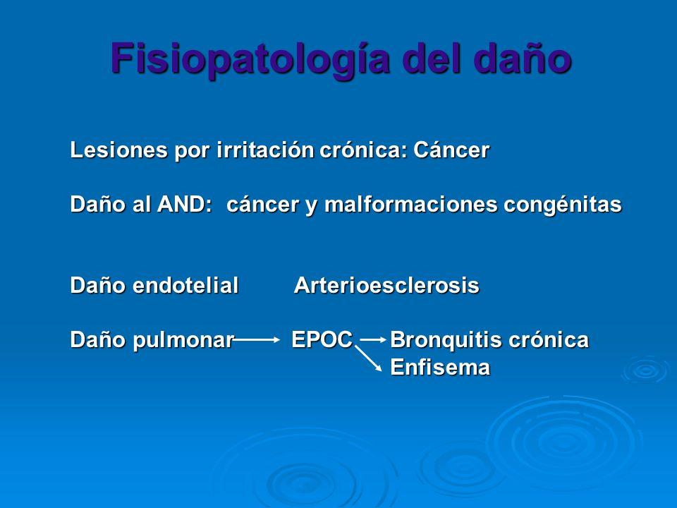 Fisiopatología del daño Lesiones por irritación crónica: Cáncer Lesiones por irritación crónica: Cáncer Daño al AND: cáncer y malformaciones congénita