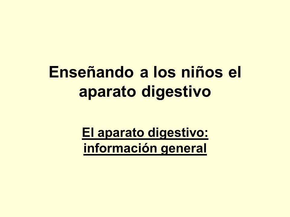 Enseñando a los niños el aparato digestivo El aparato digestivo: información general