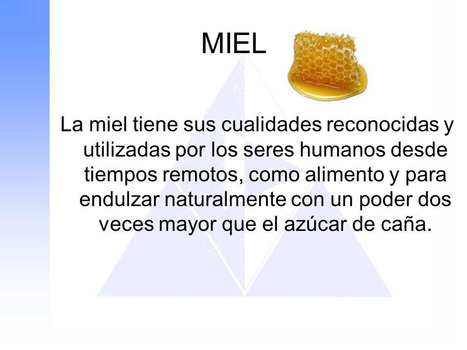 MIEL La miel tiene sus cualidades reconocidas y utilizadas por los seres humanos desde tiempos remotos, como alimento y para endulzar naturalmente con