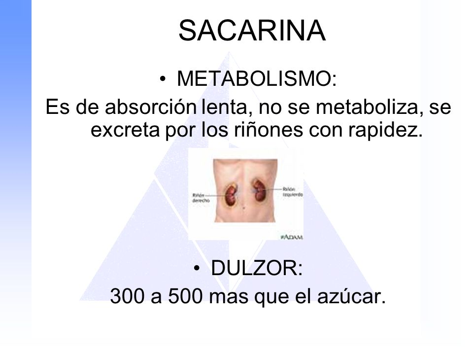 SACARINA METABOLISMO: Es de absorción lenta, no se metaboliza, se excreta por los riñones con rapidez. DULZOR: 300 a 500 mas que el azúcar.