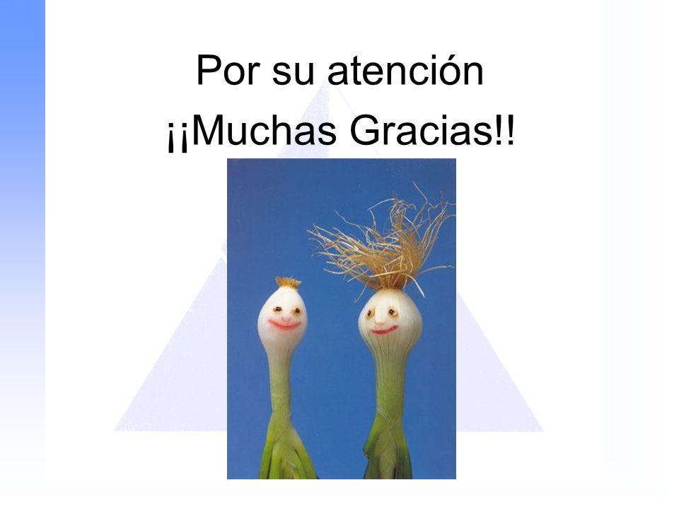 Por su atención ¡¡Muchas Gracias!!