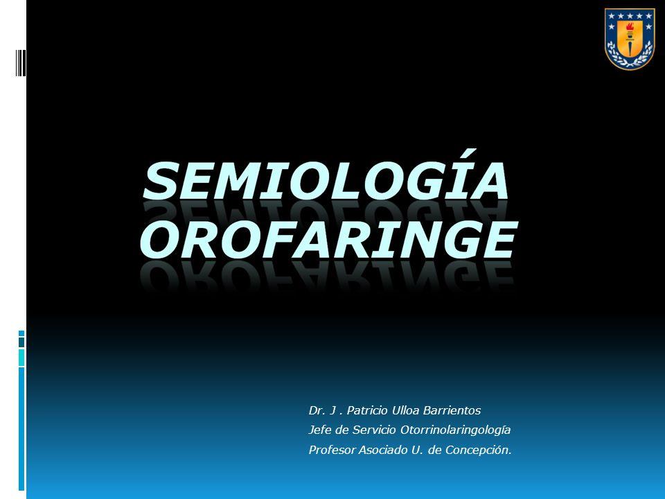 Dr. J. Patricio Ulloa Barrientos Jefe de Servicio Otorrinolaringología Profesor Asociado U. de Concepción.