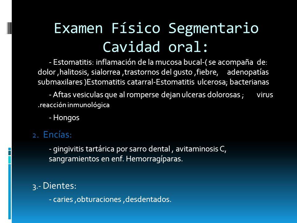Examen Físico Segmentario Cavidad oral: - Estomatitis: inflamación de la mucosa bucal-( se acompaña de: dolor,halitosis, sialorrea,trastornos del gust
