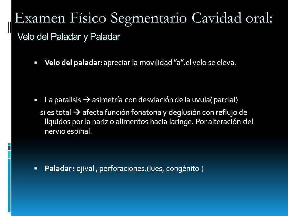 Velo del Paladar y Paladar Velo del paladar: apreciar la movilidad a.el velo se eleva. La paralisis asimetría con desviación de la uvula( parcial) si
