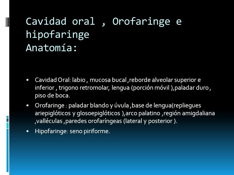 Cavidad oral, Orofaringe e hipofaringe Anatomía: Cavidad Oral: labio, mucosa bucal,reborde alveolar superior e inferior, trigono retromolar, lengua (p