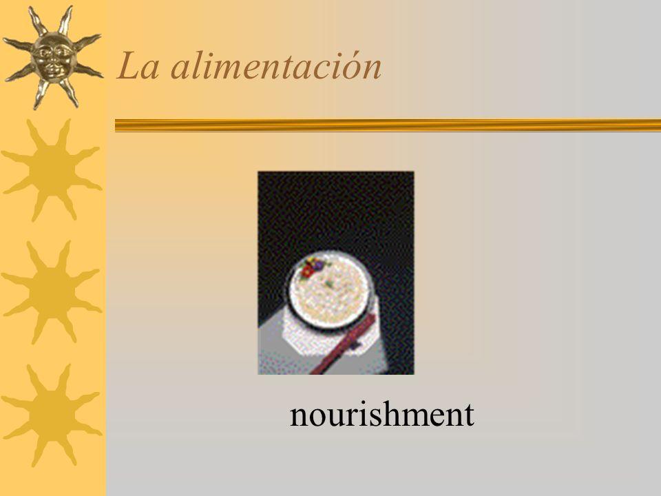La alimentación nourishment