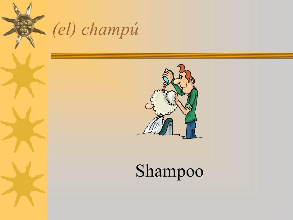 (el) champú Shampoo