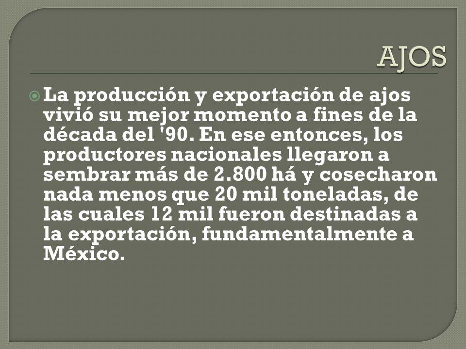 La producción y exportación de ajos vivió su mejor momento a fines de la década del 90.