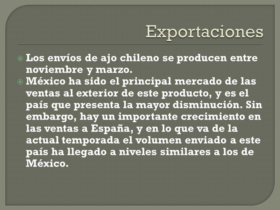 Los envíos de ajo chileno se producen entre noviembre y marzo.