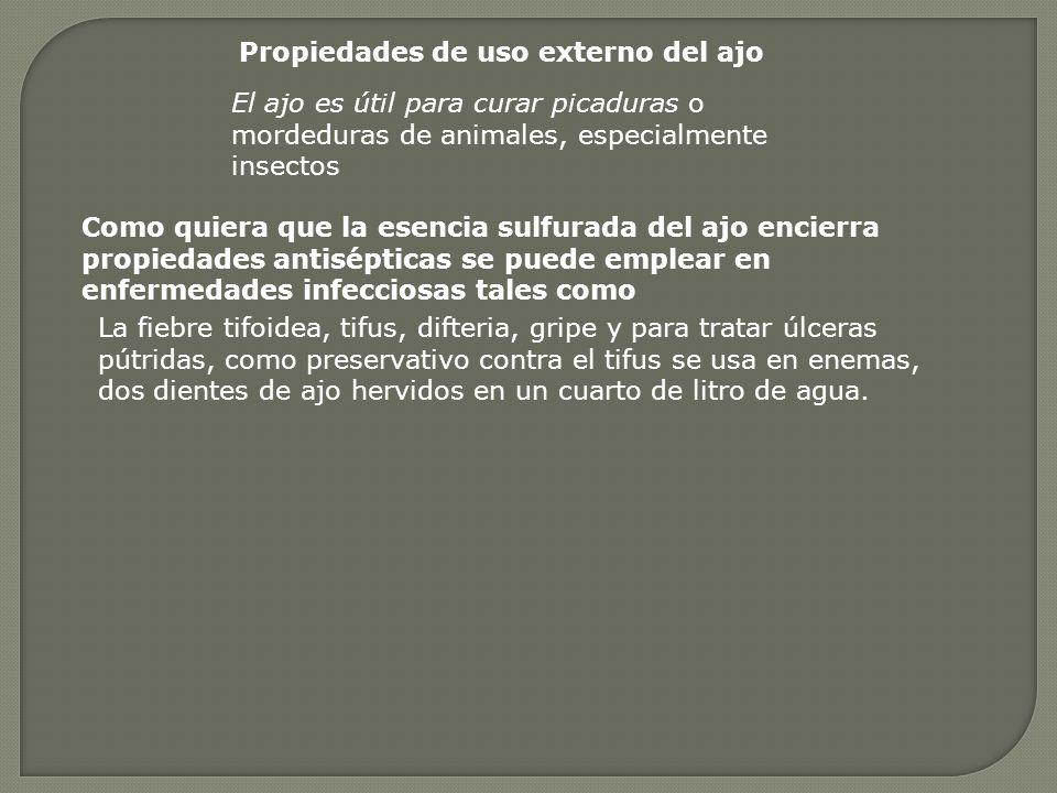 Propiedades de uso externo del ajo El ajo es útil para curar picaduras o mordeduras de animales, especialmente insectos Como quiera que la esencia sulfurada del ajo encierra propiedades antisépticas se puede emplear en enfermedades infecciosas tales como La fiebre tifoidea, tifus, difteria, gripe y para tratar úlceras pútridas, como preservativo contra el tifus se usa en enemas, dos dientes de ajo hervidos en un cuarto de litro de agua.
