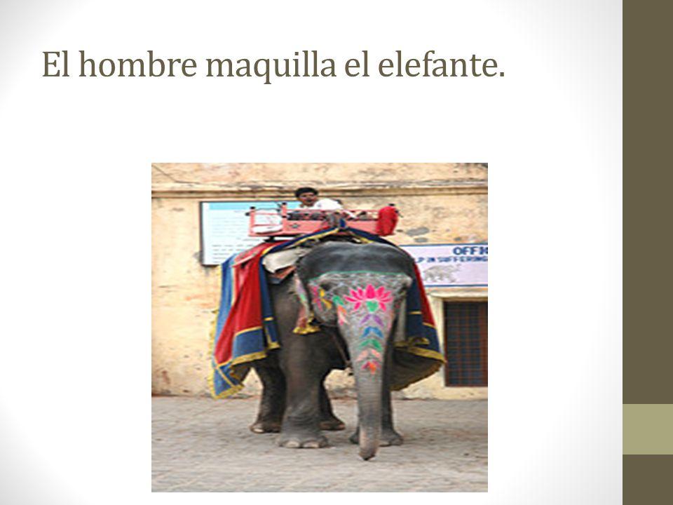 El hombre maquilla el elefante.