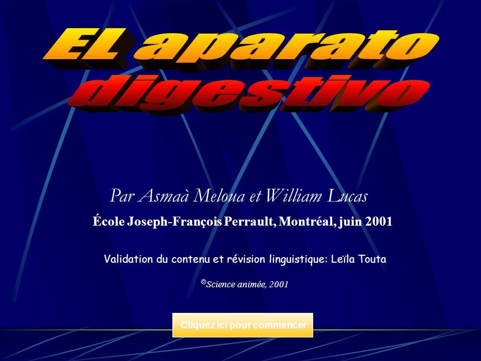 Par Asmaà Meloua et William Lucas École Joseph-François Perrault, Montréal, juin 2001 Validation du contenu et révision linguistique: Leïla Touta Scie