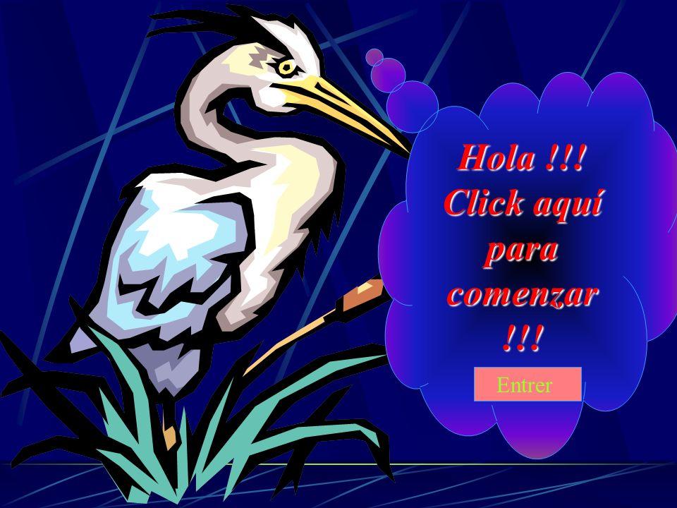 Hola !!! Click aquí para comenzar !!! Entrer