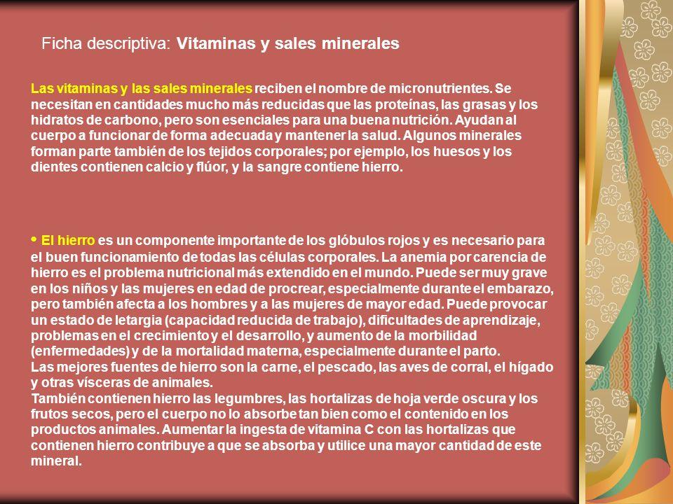 Ficha descriptiva: Vitaminas y sales minerales Las vitaminas y las sales minerales reciben el nombre de micronutrientes. Se necesitan en cantidades mu