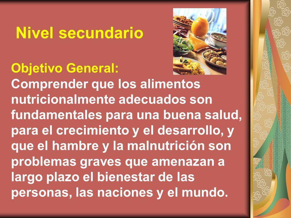Objetivo General: Comprender que los alimentos nutricionalmente adecuados son fundamentales para una buena salud, para el crecimiento y el desarrollo, y que el hambre y la malnutrición son problemas graves que amenazan a largo plazo el bienestar de las personas, las naciones y el mundo.