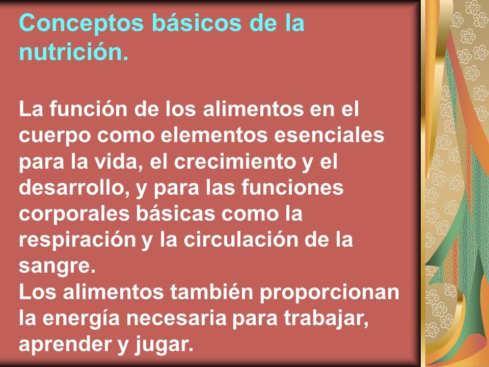 Conceptos básicos de la nutrición. La función de los alimentos en el cuerpo como elementos esenciales para la vida, el crecimiento y el desarrollo, y