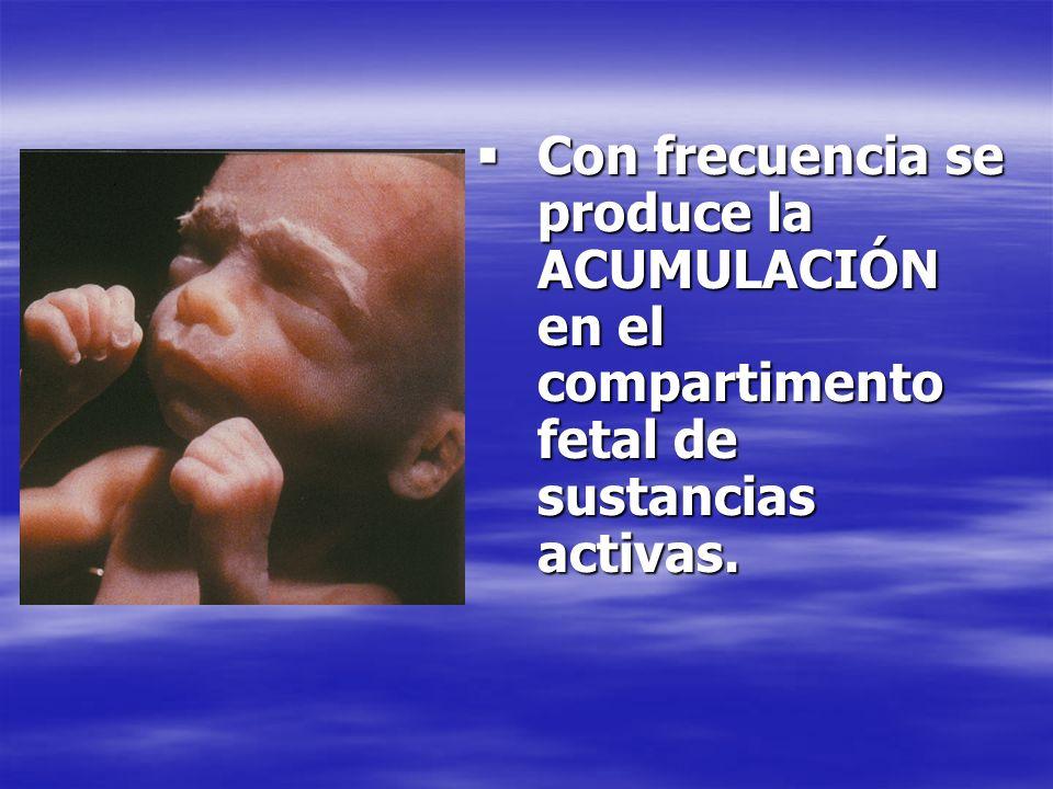 Con frecuencia se produce la ACUMULACIÓN en el compartimento fetal de sustancias activas. Con frecuencia se produce la ACUMULACIÓN en el compartimento