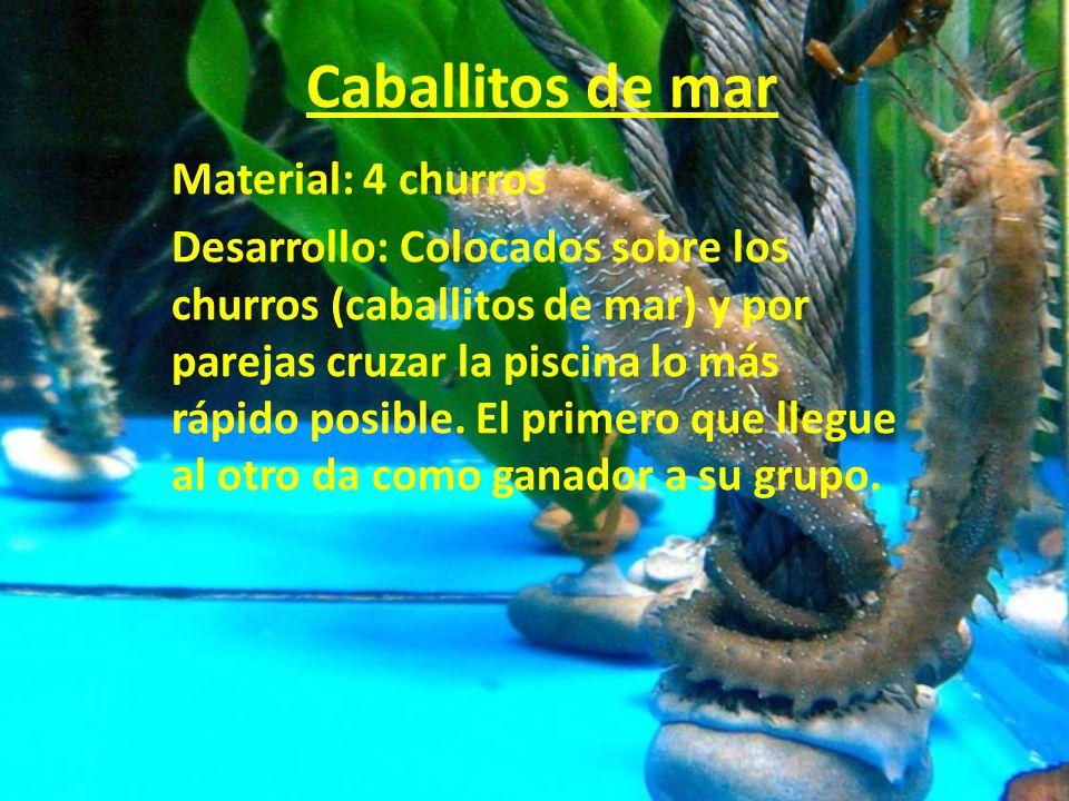 Caballitos de mar Material: 4 churros Desarrollo: Colocados sobre los churros (caballitos de mar) y por parejas cruzar la piscina lo más rápido posibl